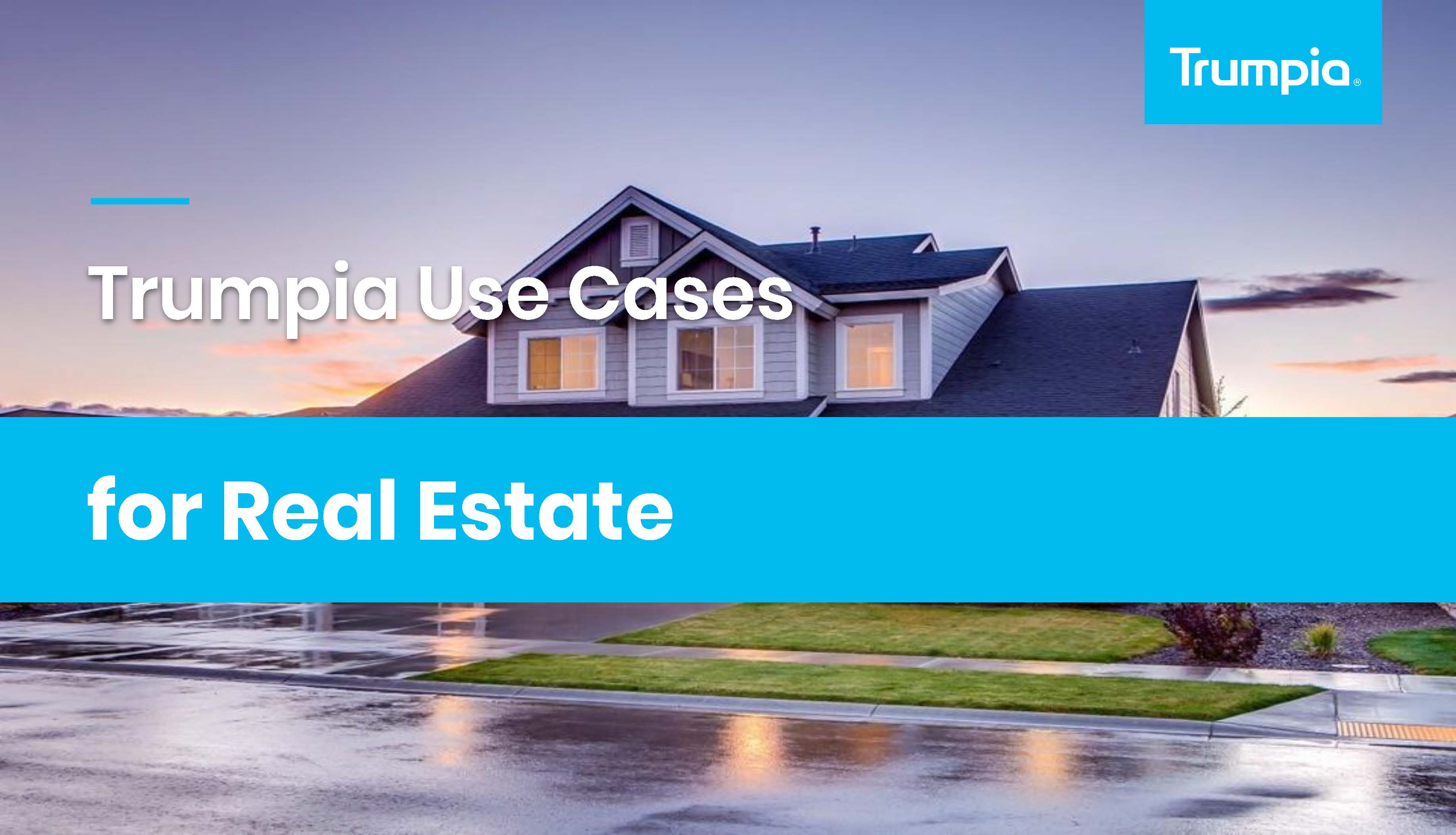 RealEstate_PandemicUseCase_Page_01